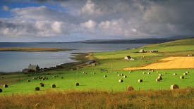 Farmland at Houton, Mainland