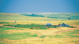 Grassland in Kansas, USA