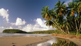 Beach_on_La_Sagesse_Bay2C_Grenada