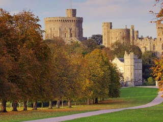 The Long Walk in Autumn Windsor Castle England
