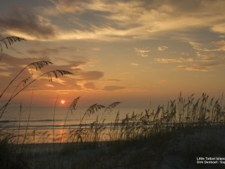 Little Talbot Island, Florida