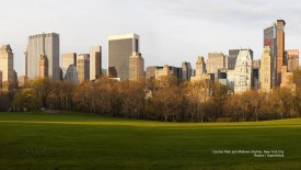 Central Park and Midtown Skyline, New York City