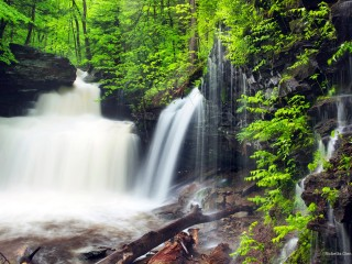 Ricketts Glen State Park, Pennsylvania