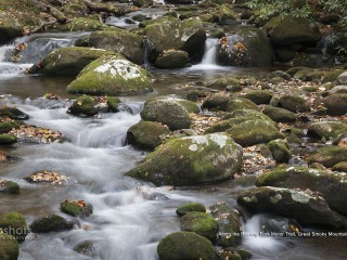 Along the Roaring Fork Motor Trail, Great Smoky Mountains, Tennessee