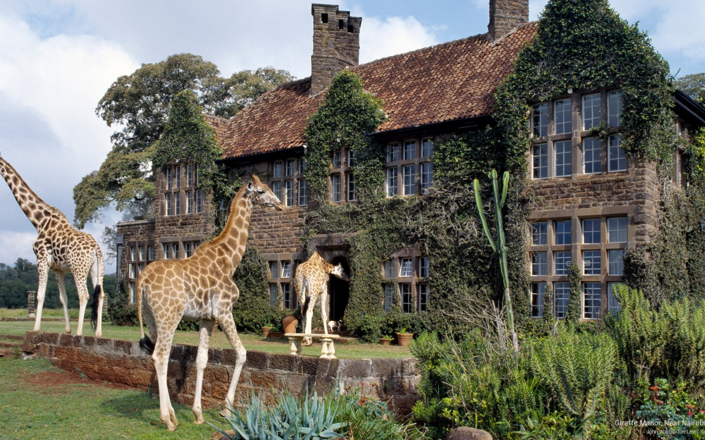 Nairobi Kenya  City new picture : Giraffe Manor, Near Nairobi, Kenya e time.in : e time.in