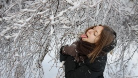 Babe Licks Winter Snow