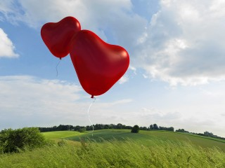 Two Hearts Taking Flight