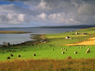 Farmland at Houton, Orkney Islands, Scotland