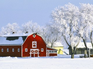 Red Barn and Hoarfrost, Manitoba, Canada