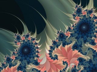 Flower Designs Abstracts
