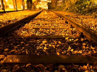 Autumn Trees Nature Landscape Leaves Railroad Train Tracks