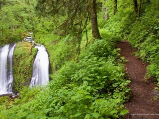 Upper McCord Creek Falls, Columbia River Gorge, Oregon