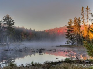 Early Morning, Algonquin Provincial Park, Ontario