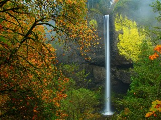 Latourell Falls in Autumn, Columbia River Gorge, Oregon