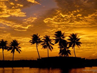 Sunset Over the Backwaters, Alleppey, Kerala, India