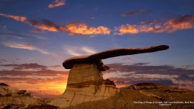 The King of Wings at Sunset, San Juan Badlands, New Mexico