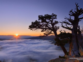 Donner Summit at Sunrise, California