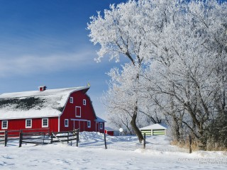 Red Barn and Hoarfrost, Near Beausejour, Manitoba