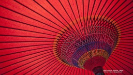 Red Parasol, Honshu, Japan