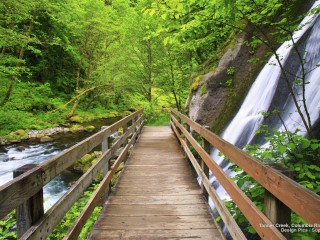 Tanner Creek, Columbia River Gorge, Oregon