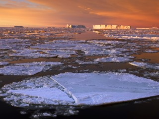 Drifting Pack Ice at Dawn, Snow Hill Island, Antarctica