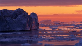 Icebergs in Disko Bay, Greenland