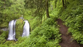 Upper McCord Creek Falls Columbia River Gorge, Oregon