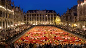Grand-Place Flower Carpet, Brussels, Belgium