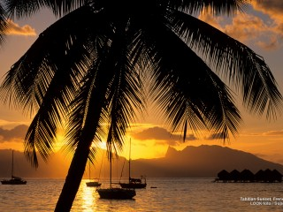 Tahitian Sunset, French Polynesia